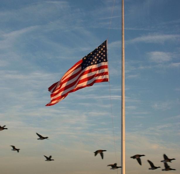 american-flag-1445144-639x1036